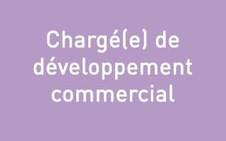 Chargé(e) de développement commercial – Lyon